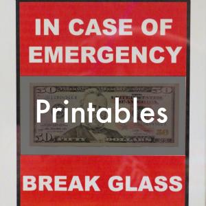 http://www.danareneestyle.com/wp-content/uploads/2016/01/break-glass-1-1.jpg